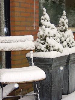 Sneeuw sfeer in voortuin