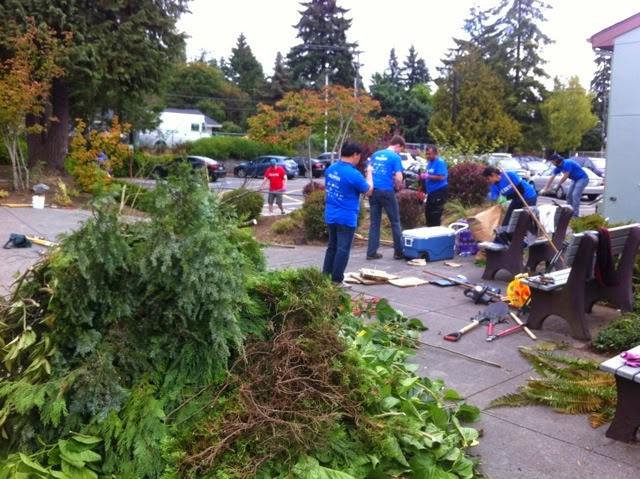 Shoreline Area News Day Of Caring Microsoft Employees
