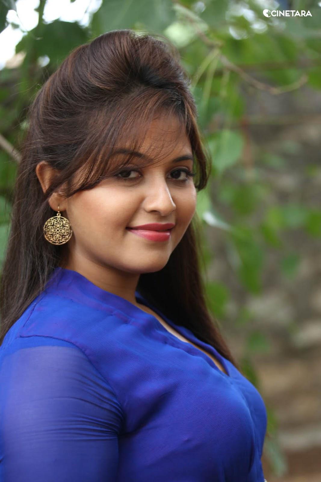 Anjali Desi Actress Anjali Hot Side View In Blue Dress
