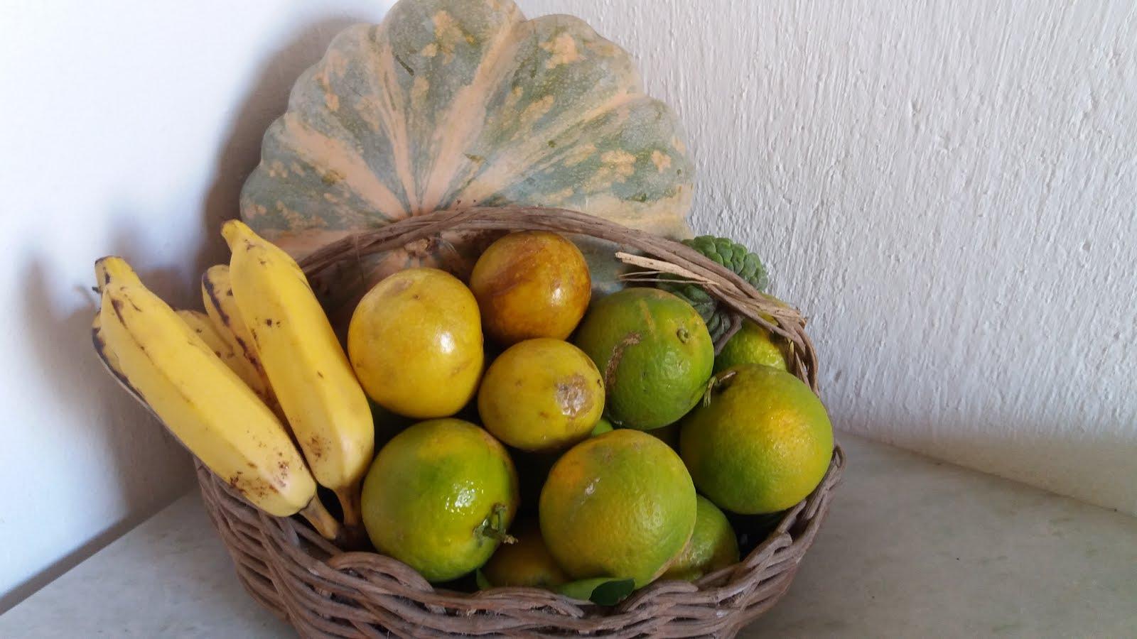 frutos da Sementeira Caseira