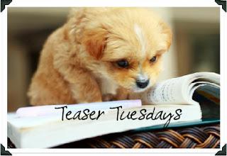 Teaser Tuesdays #6