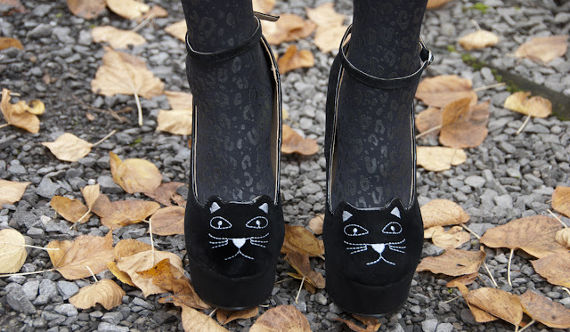 cat, shoes, high heels, cat face