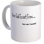 Socialization...It's Why I Homeschool