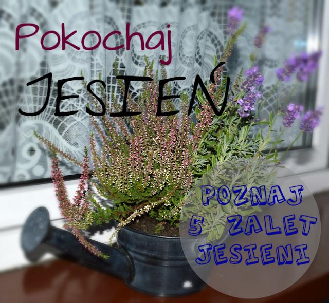 http://raisin1989.blogspot.de/2013/09/pokochaj-jesien-o-zaletach-jesieni.html