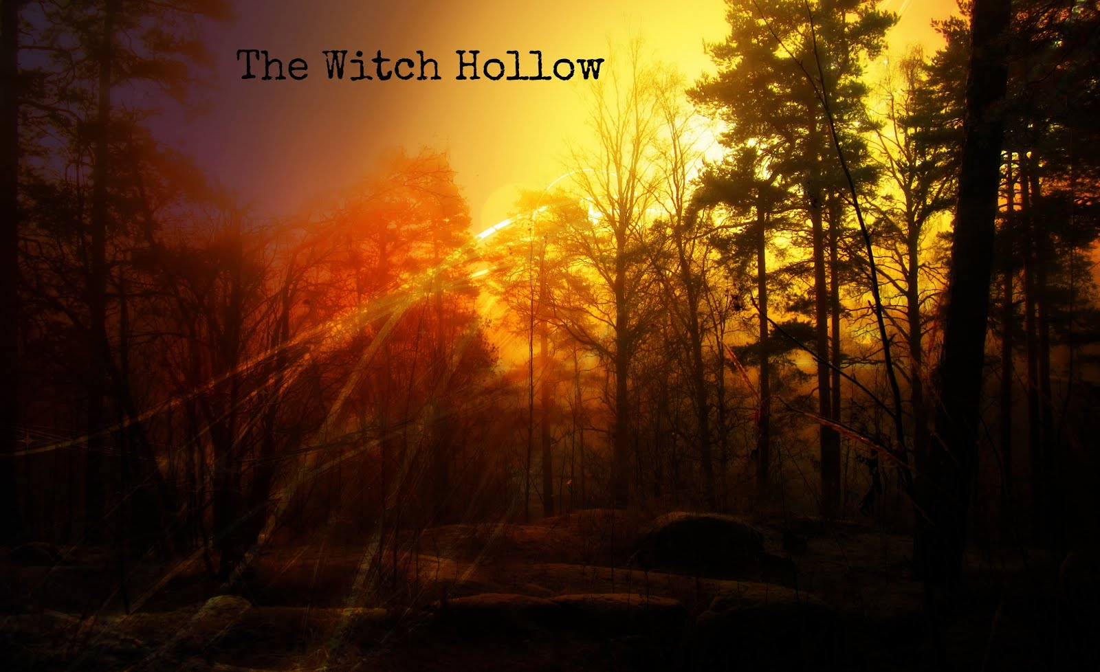 The Witch Hollow
