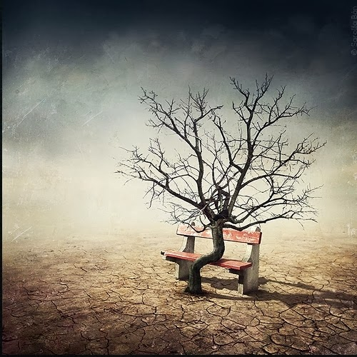 05-Surreal-Photo-Manipulation-Sarolta-Bán-www-designstack-co