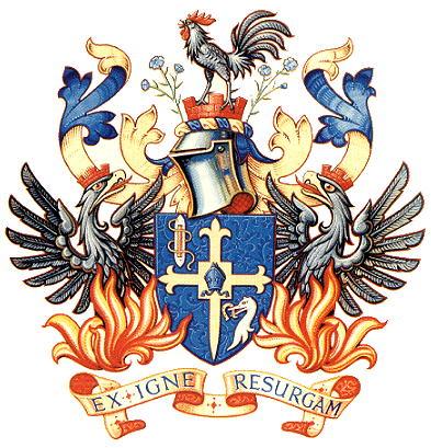 medieval bride shield of arms diy