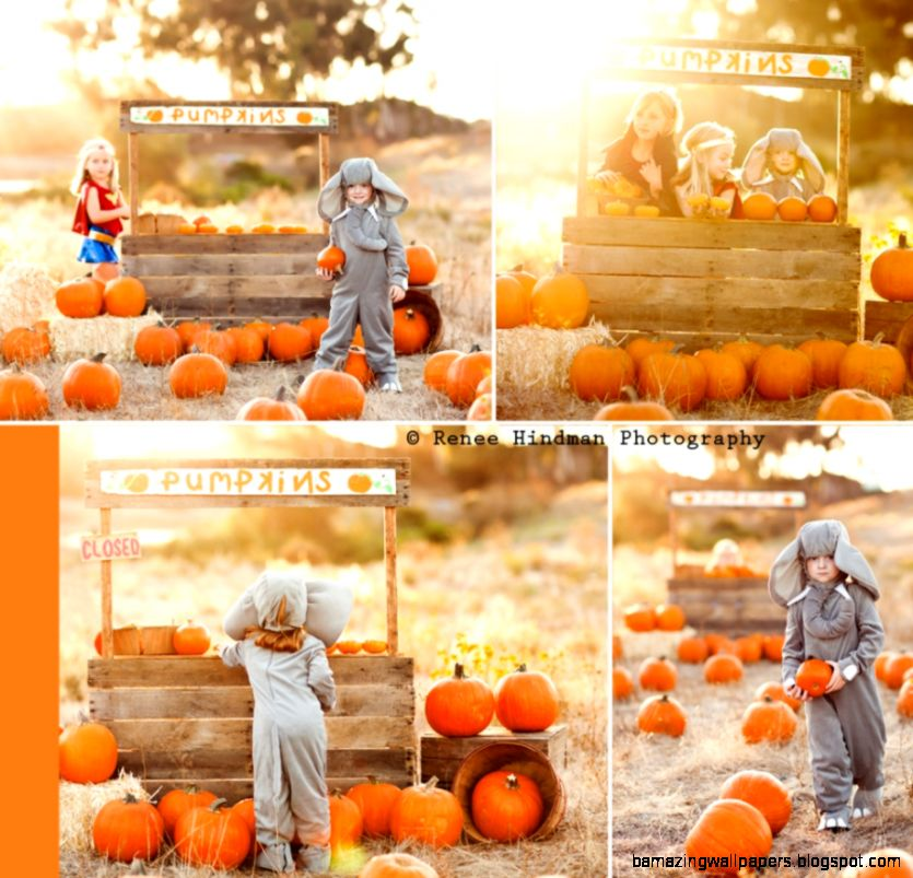1000 images about Pumpkin Stand Mini Session Inspiration on