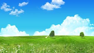 Summer Breeze Wallpaper