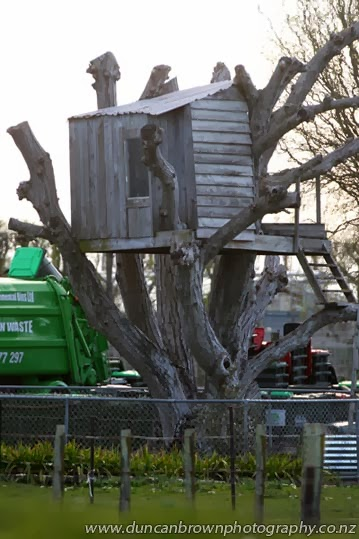 A Kiwi Classic, a tree hut in Richmond Rd, Clive