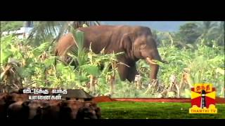 SUVADUGAL EP09 01-09-2013 Thanthi TV Documentary