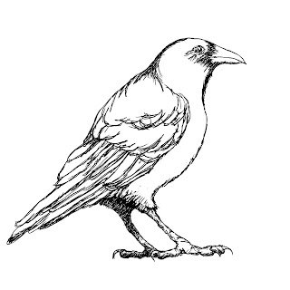 Crow Clip Art :: Line Drawing :: Outline