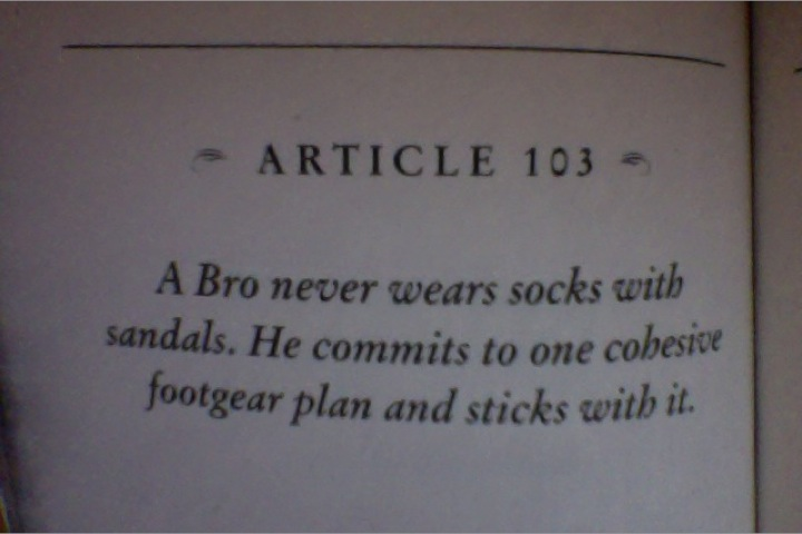 the bro code all articles