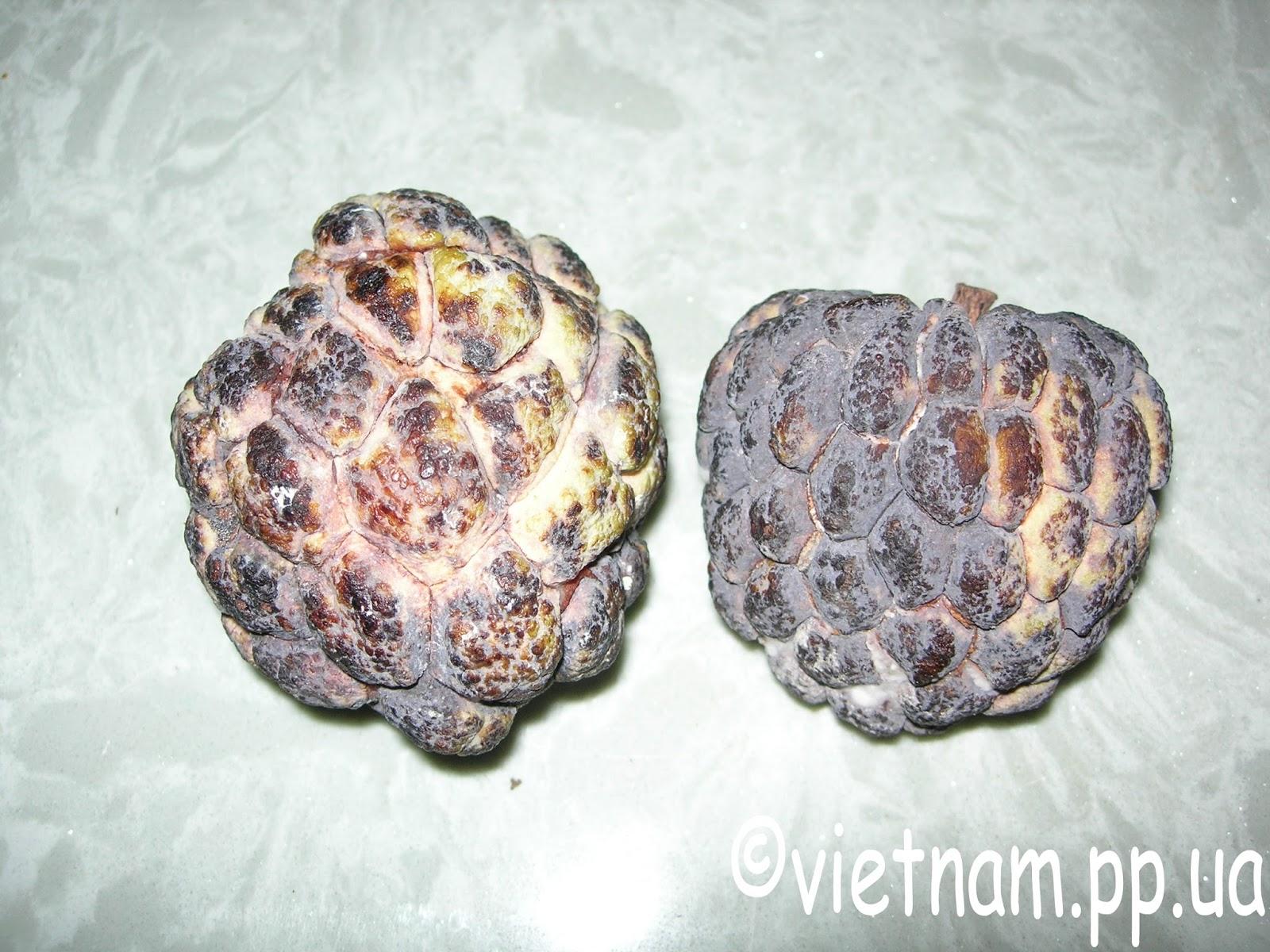 Экзотические фрукты Вьетнама