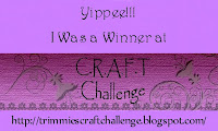 C.R.A.F.T. Challenge #174 Winner