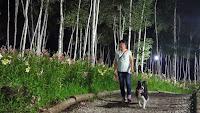 http://border-polly.blogspot.jp/2014/08/blog-post_28.html