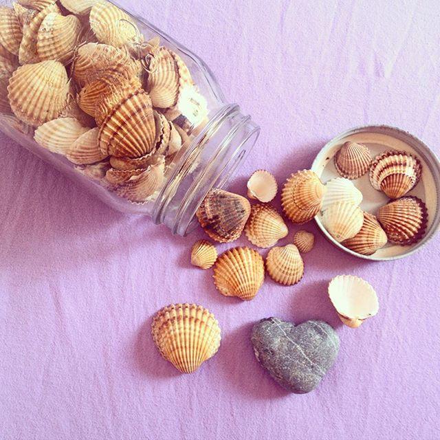 estate, collezionare conchiglie