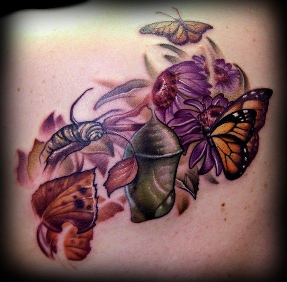 Cycle of development the butterfly tattoo