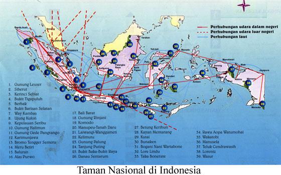 20++ Peta hewan endemik indonesia terbaru