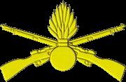 Механізовані війська