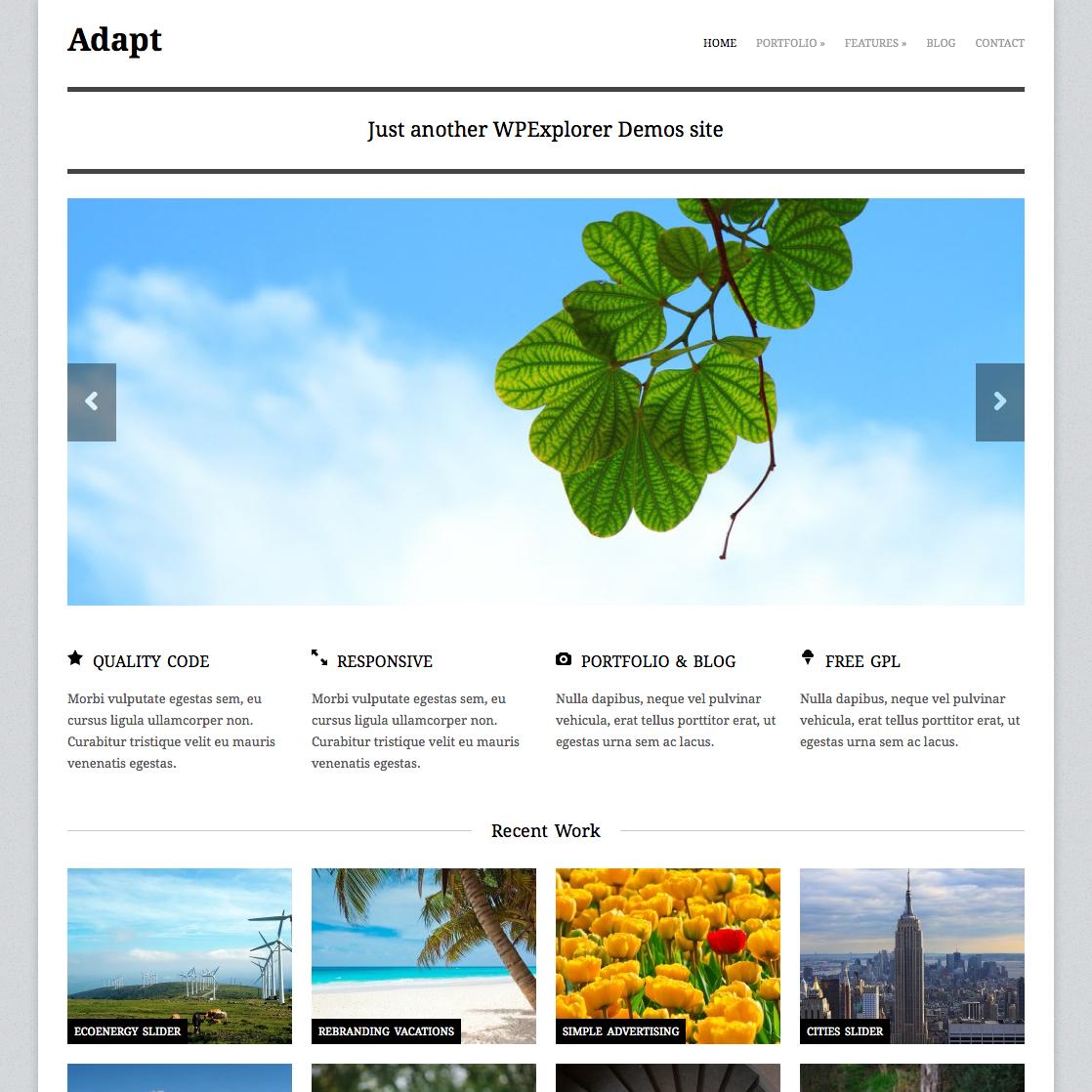 Free Responsive Business Portfolio WordPress Theme