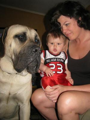 Baby and Mastiff