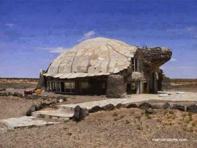 Rara casa con la forma de una tortuga de tierra