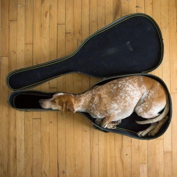 nueva cama con forma de guitarra