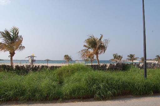 Dinodxbdino Al Mamzar Beach Park Al Mamzar Dubai