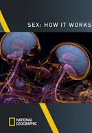 Hoạt Động Tình Dục - Sex: How It Works