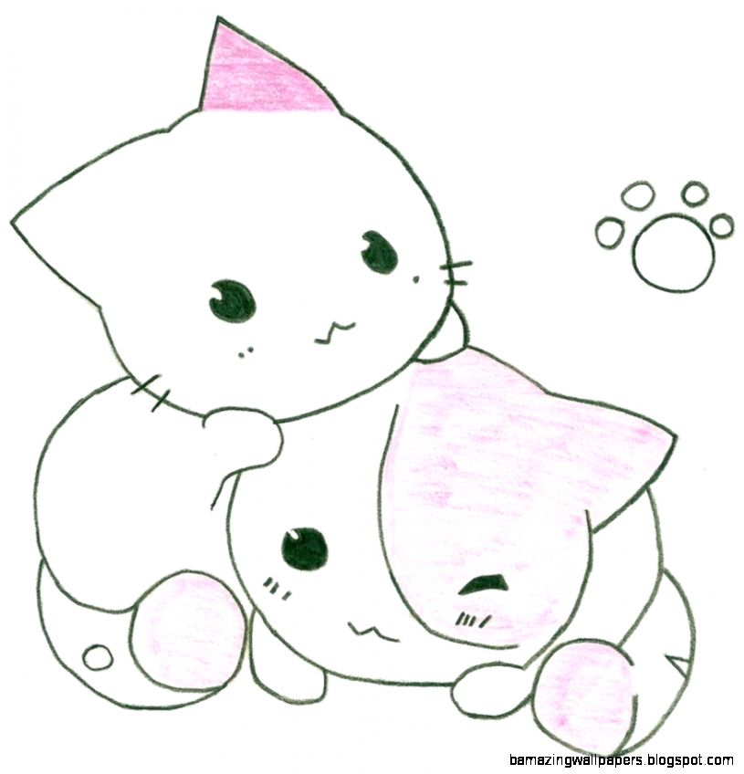 Two Cute Cats By Steamzocker1 On DeviantART  CatBreedsPic