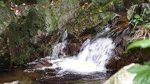 fresh water characteristics