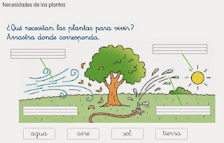 http://www.ceiploreto.es/sugerencias/cp.juan.de.la.cosa/1_2/cono/actividades/08/03/visor.html