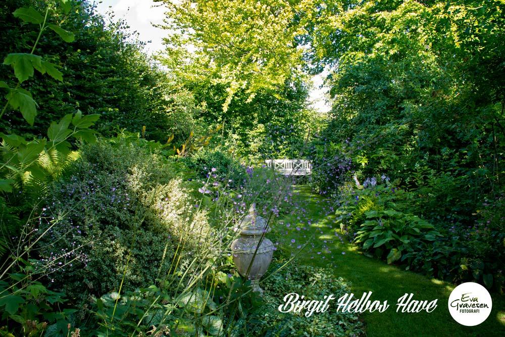 I haven hos evigglade ♥: havebesøg i birgits helbos have på fyn