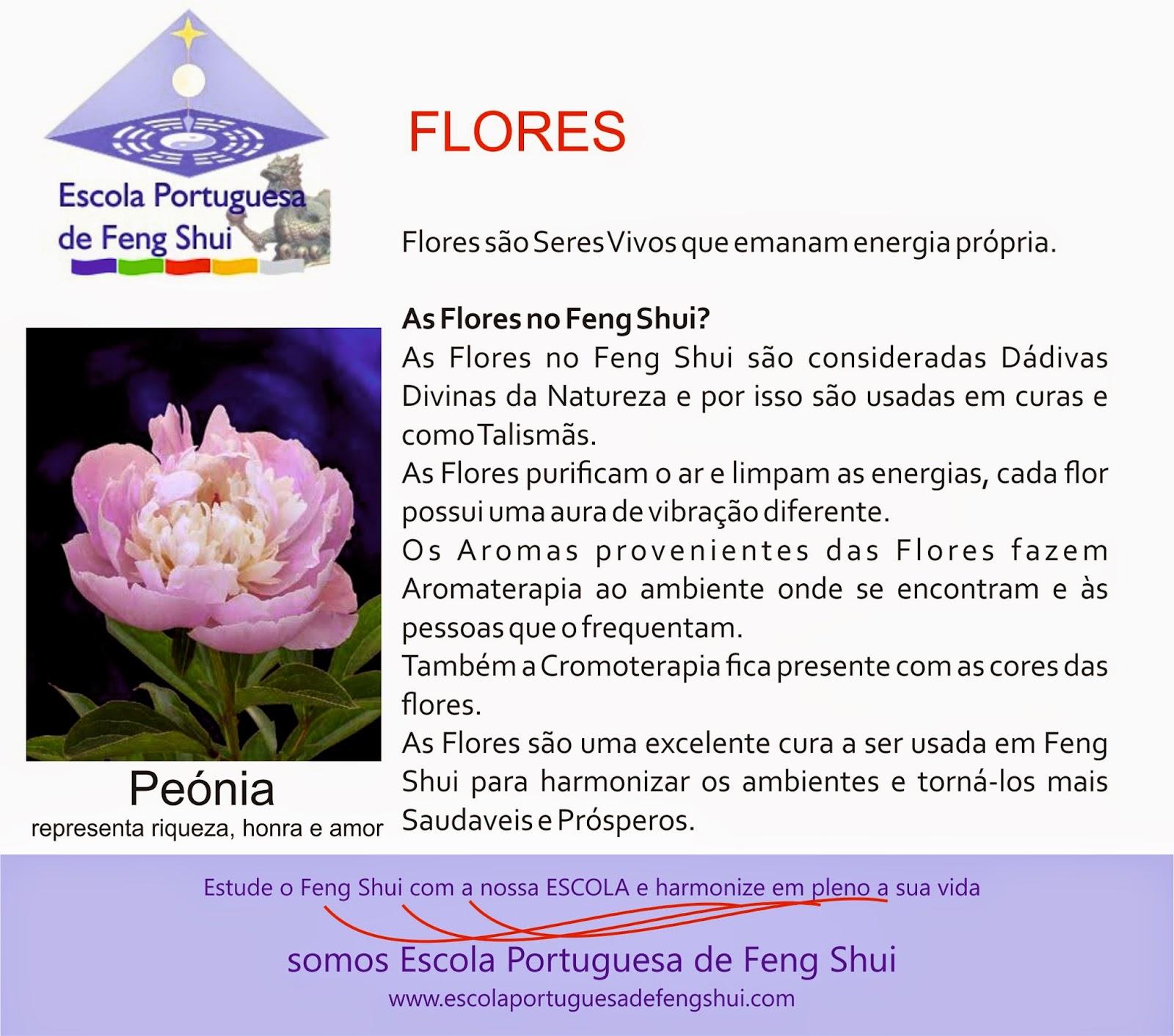 feng shui espirualidade feng shui fengshui flor fong fong shoei fong  #AE2A1D 1600 1412