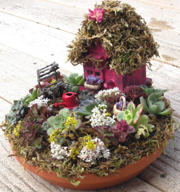 mini jardim suculentas : mini jardim suculentas:meu jardim é assim mini jardim 1 mini jardim 2 mini jardim 3 mais