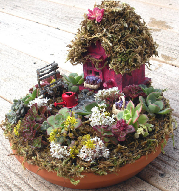 mini jardim suculentas:meu jardim é assim mini jardim 1 mini jardim 2 mini jardim 3 mais