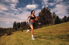 cardio training routines
