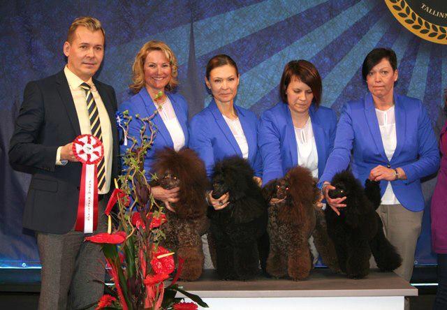 Tallinn Winner Show 2013