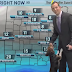Cachorro invade previsão do tempo: confira o vídeo!