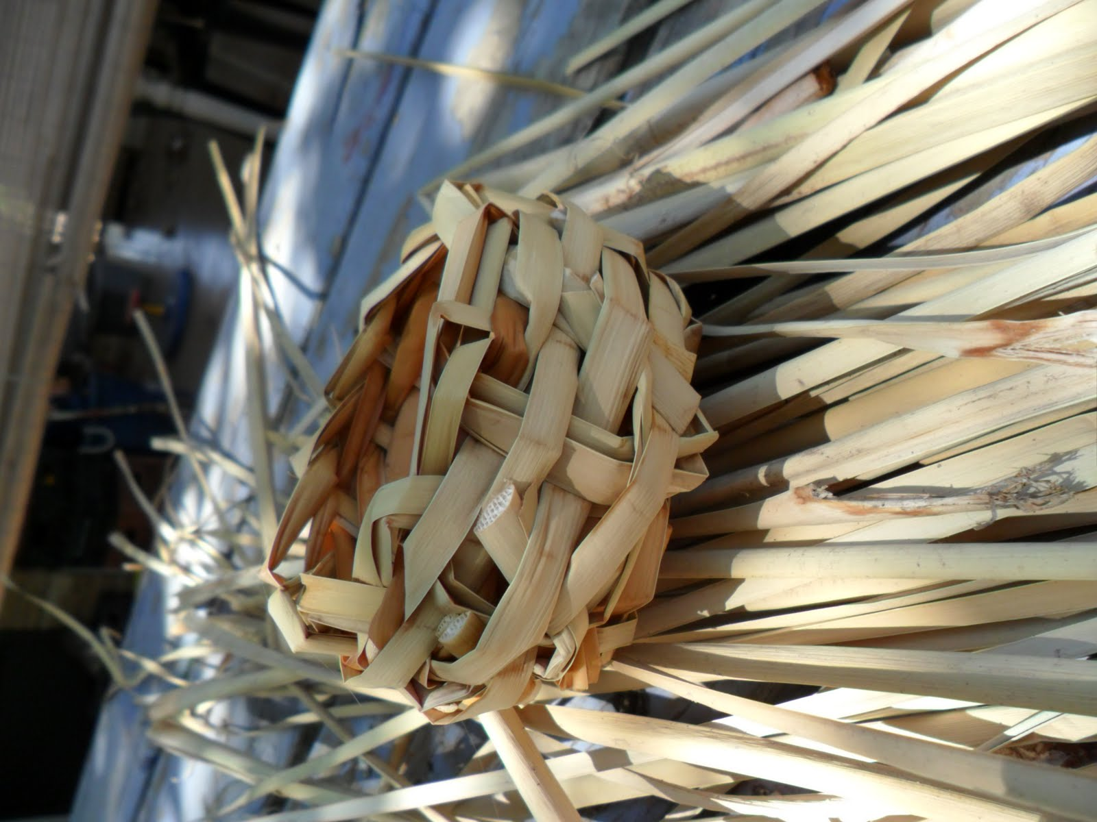 How To Weave A Cattail Basket : Worth a knit cattail basket