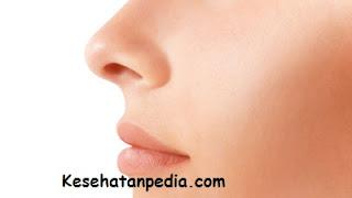 Cara menyembuhkan hidung mampet sebelah secara alami
