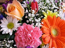 http://commons.wikimedia.org/wiki/File%3ABirthday_bouquet.jpg
