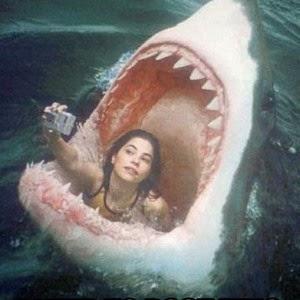 Risk Selfies   Selfies Risk