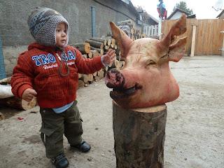 Carnea de porc la copii