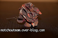fleur en tissu sans couture
