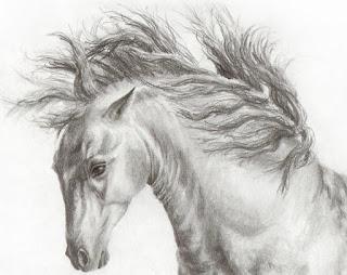 horse drawings, horse artworks, equine art