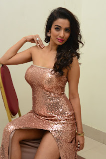 Heena Panchal Stills At Thikka Audio Launch (32).JPG