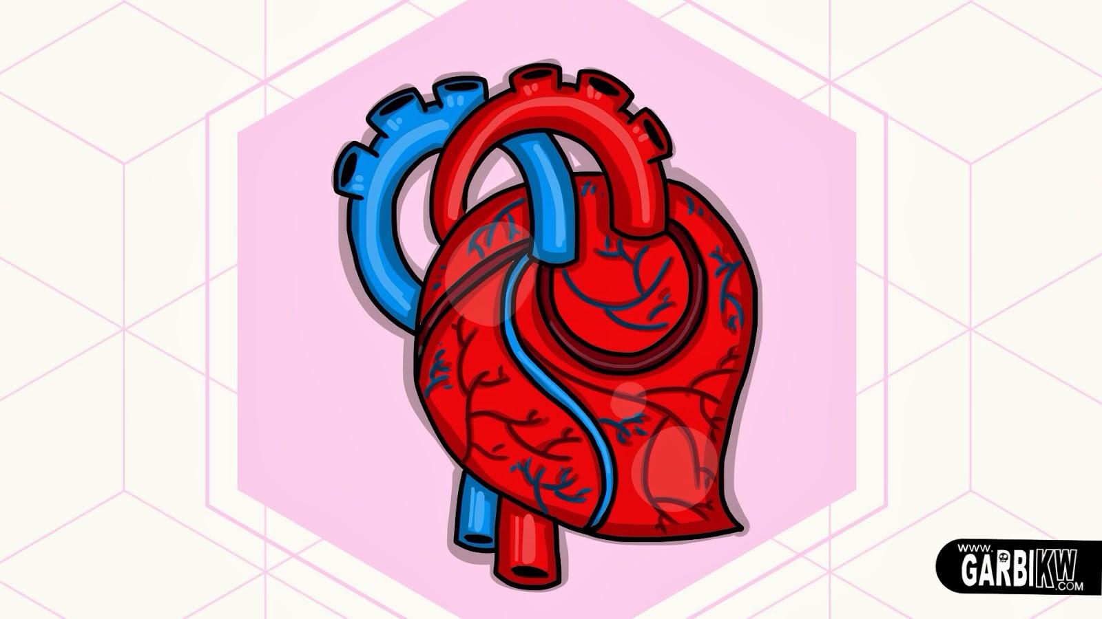 Imagenes De Corazones Dibujos - Corazones: Imágenes de corazones dibujos de corazones