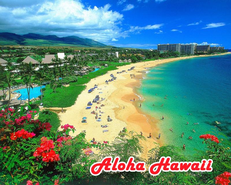 Acadex Voyager Hawaii